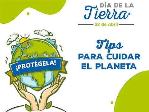 Tips para cuidar el medio ambiente desde casa
